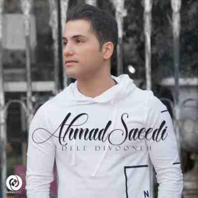 دانلود آهنگ شاد احمد سعیدی به نام دل دیوونه